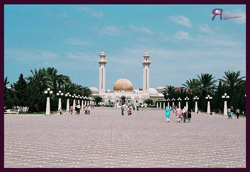 Что посмотреть в Тунисе